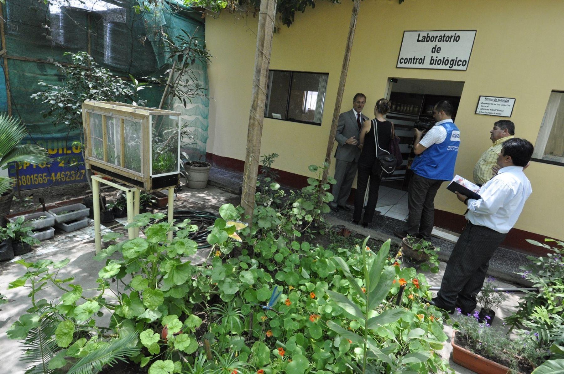 Jardines verticales son opci n ecol gica y saludable para for Jardines verticales lima