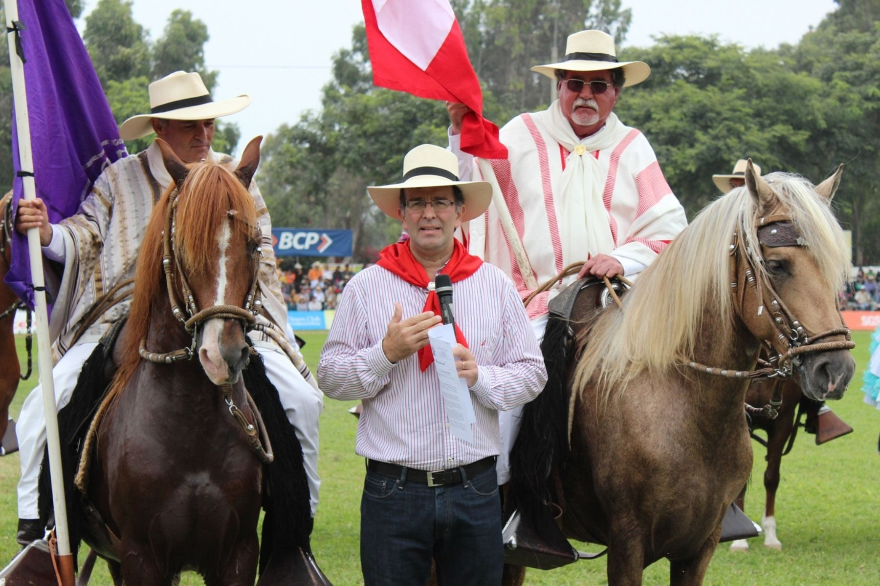Nuestro caballo de paso se suma ahora a la lista de los productos de bandera que representan a la peruanidad. Foto: ANDINA/Difusión.