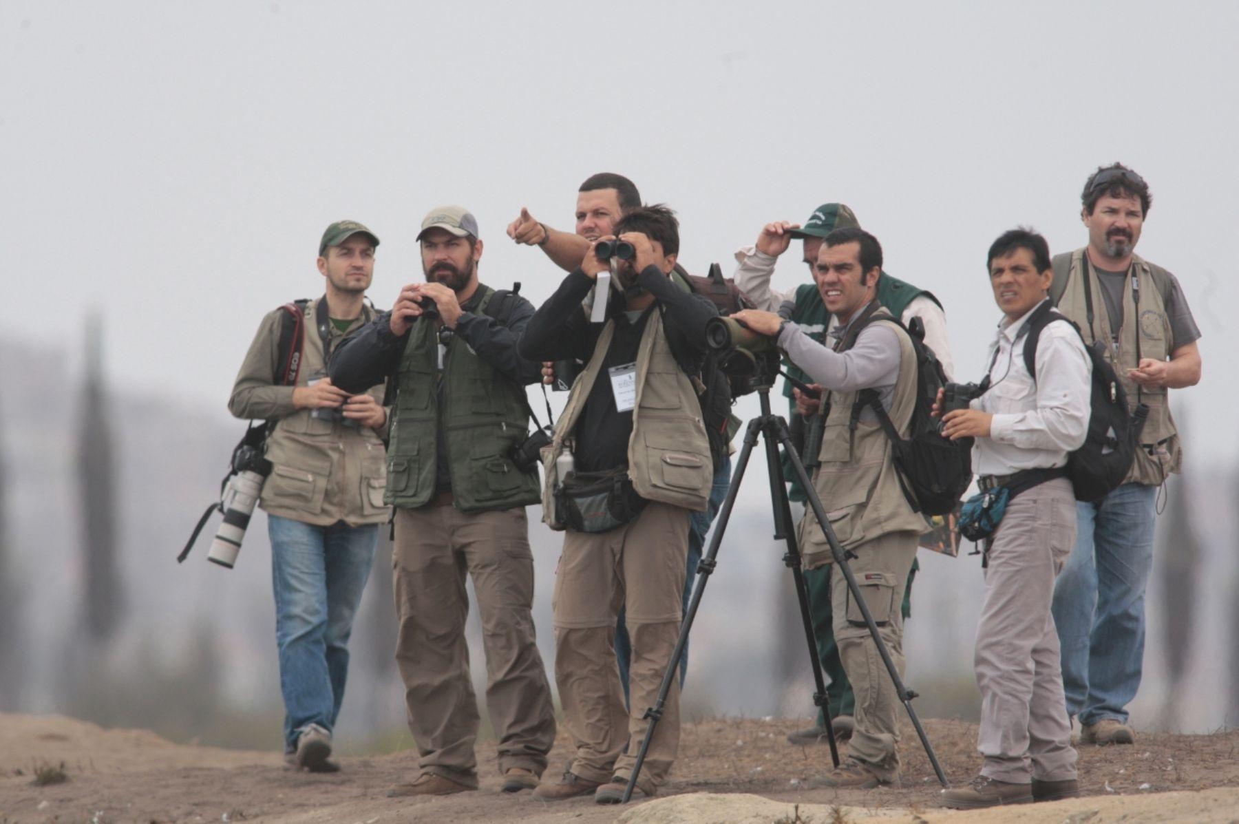 Los más renombrados equipos internacionales de avistamiento de aves visitarán Perú nuevamente para participar en una competencia mundial.