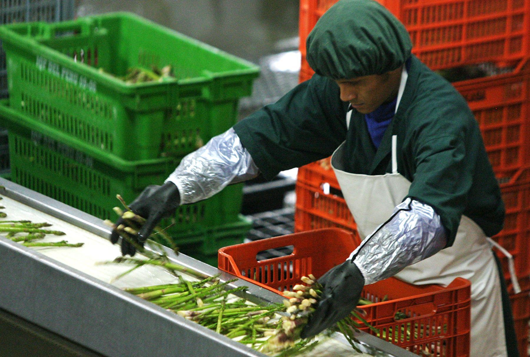 Agroexportaciones ANDINA