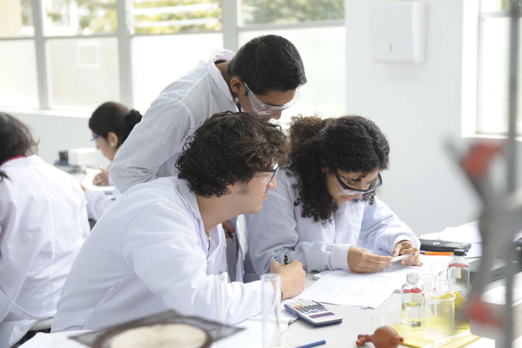 Investigadores peruanos tiene acceso ahora a importantes bases de datos científicos. Foto: Andina/Difusión