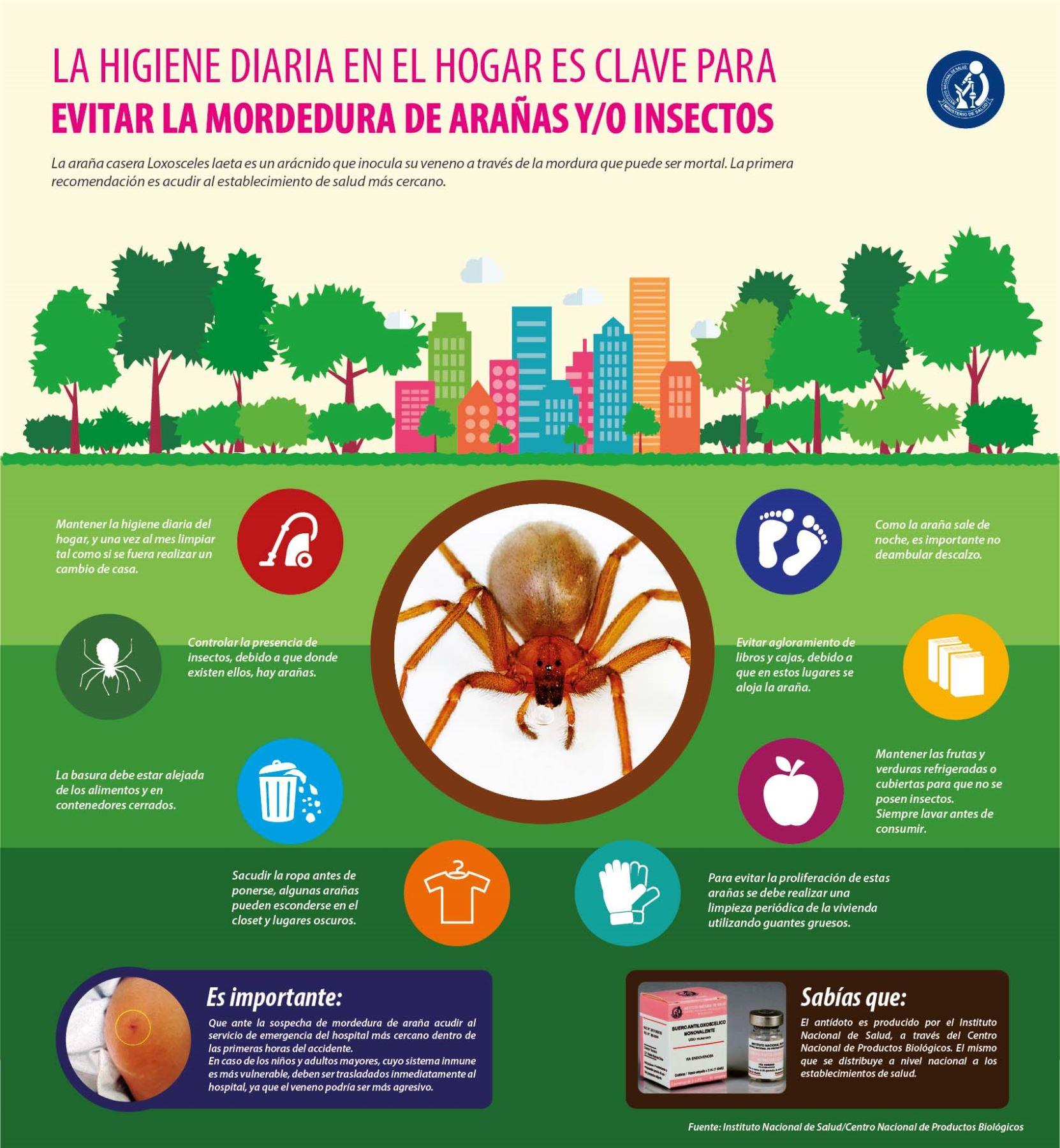 Plantas Arom Ticas Funcionan Como Insecticidas Naturales Para  ~ Como Eliminar Las Polillas De Casa