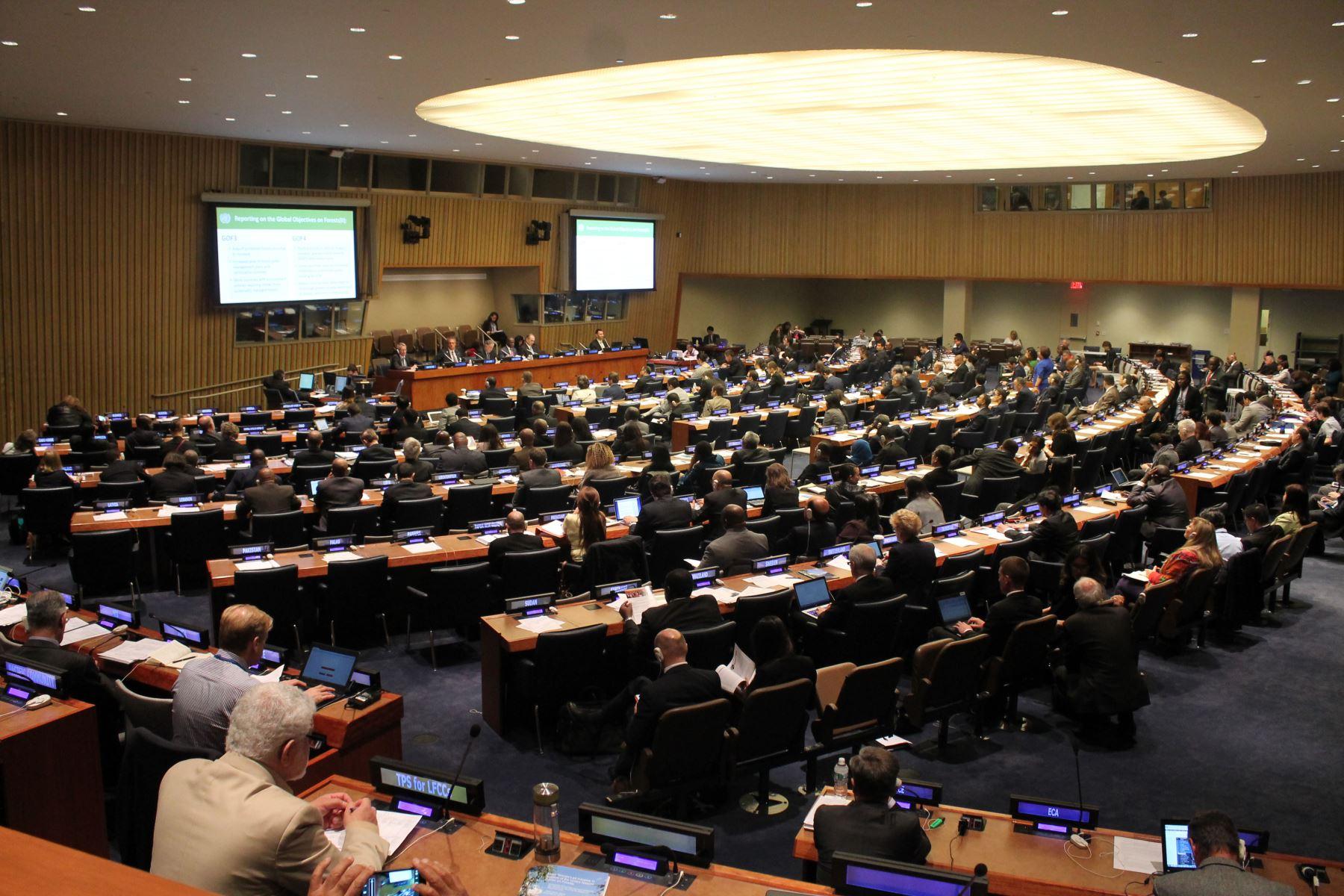 Reunión de las Naciones Unidas sobre bosques.