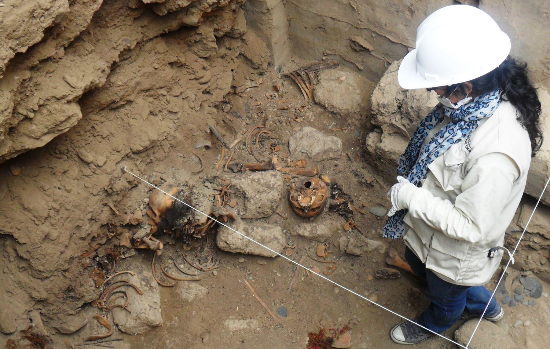 Vestigios se hallaron en el sector oeste del conjunto amurallado Xllangchic–An del complejo arqueológico Chan Chan. ANDINA