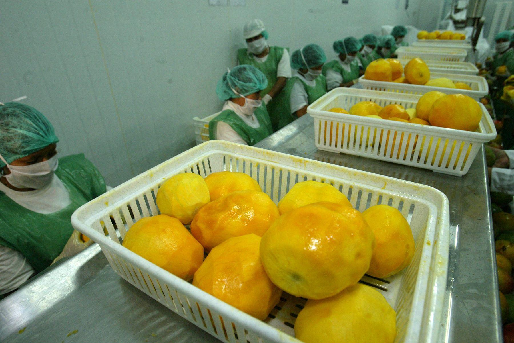 Mangos. ANDINA/archivo
