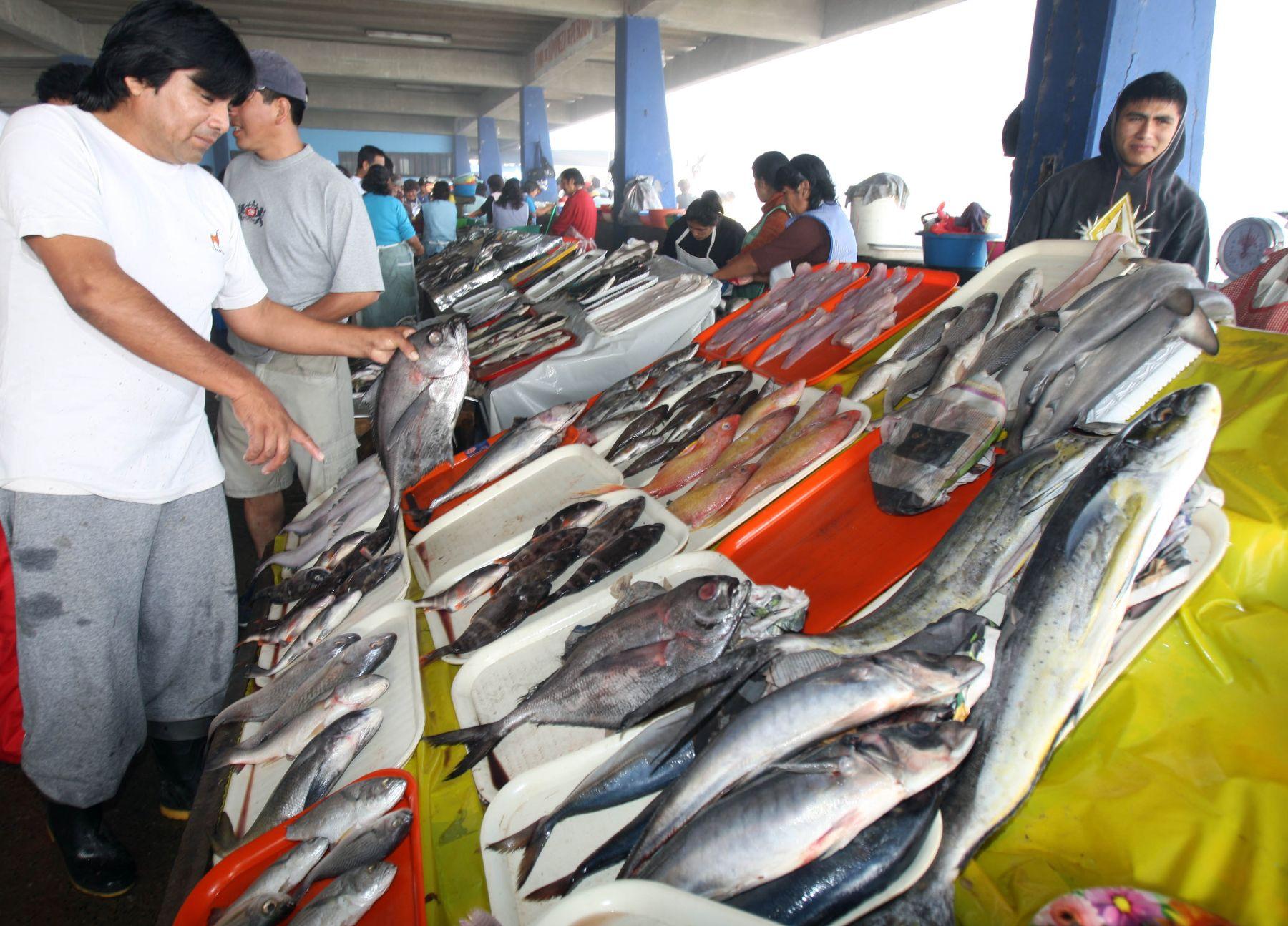 Apega pide consumir productos marino de estación. Foto. ANDINA / Norman Córdova