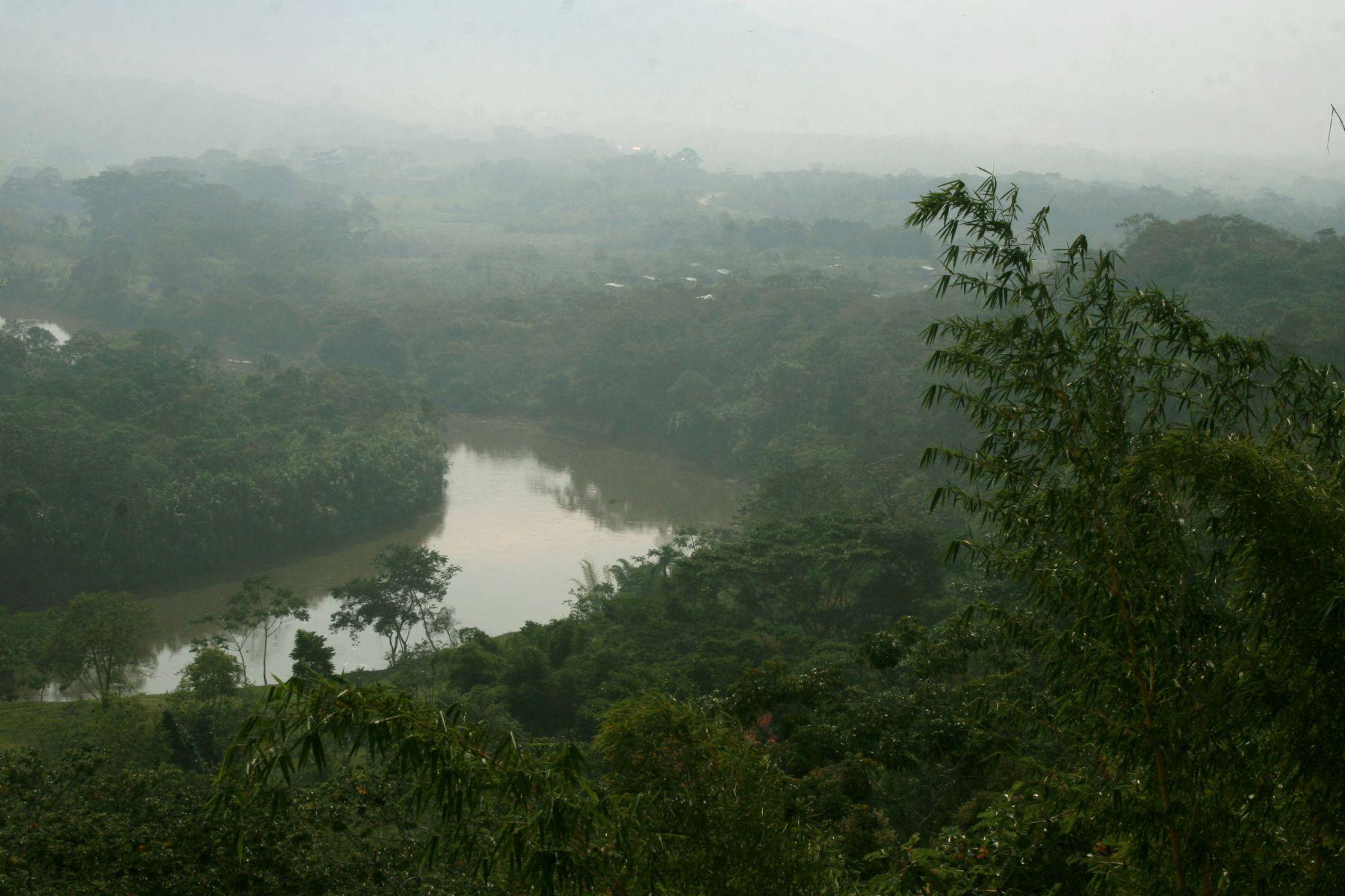 Selva de Tarapoto, en el departamento de San Martín.