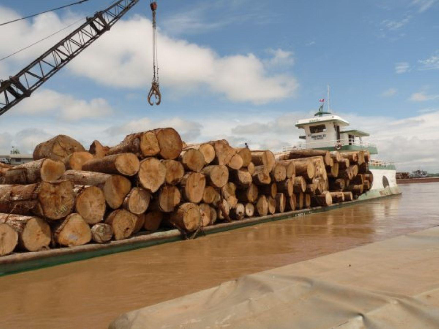 Recursos maderables.Foto:  ANDINA/Difusión.
