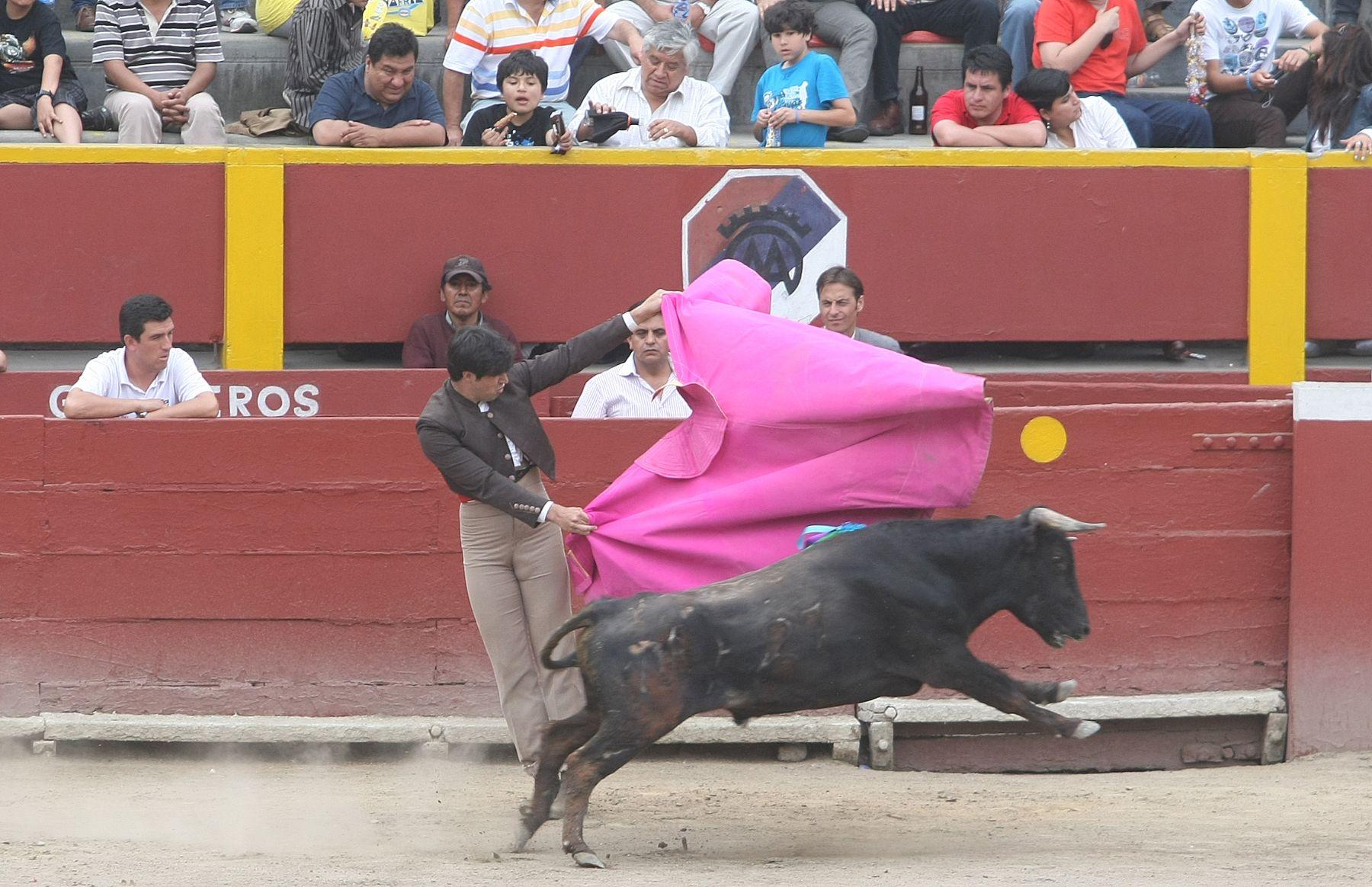 Club Hípico organiza festival taurino para financiar equinoterapia a favor de niños Down. Foto: ANDINA/Vidal Tarqui