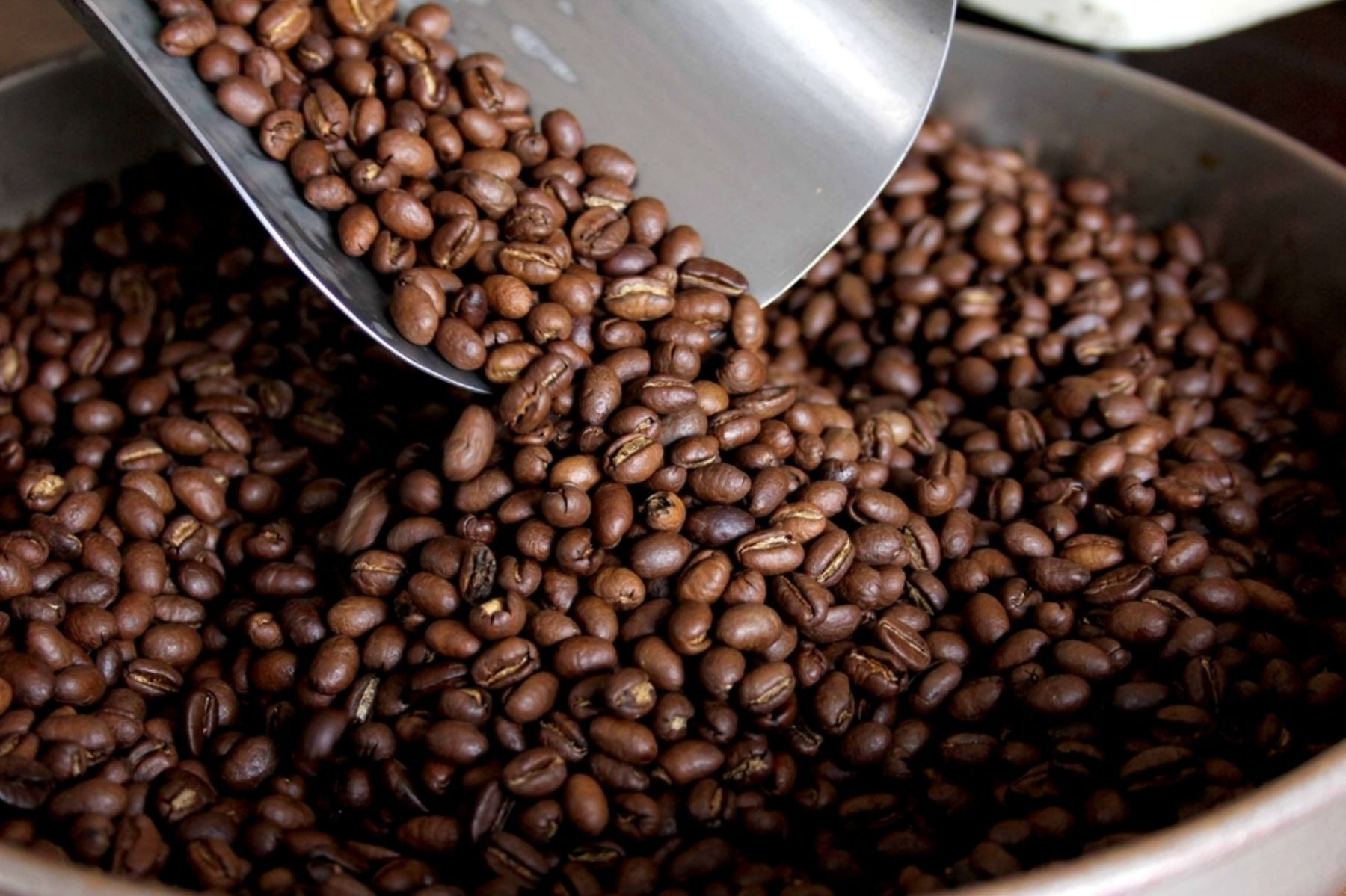 Se incrementa demanda de café peruano en Asia. ANDINA/Difusión