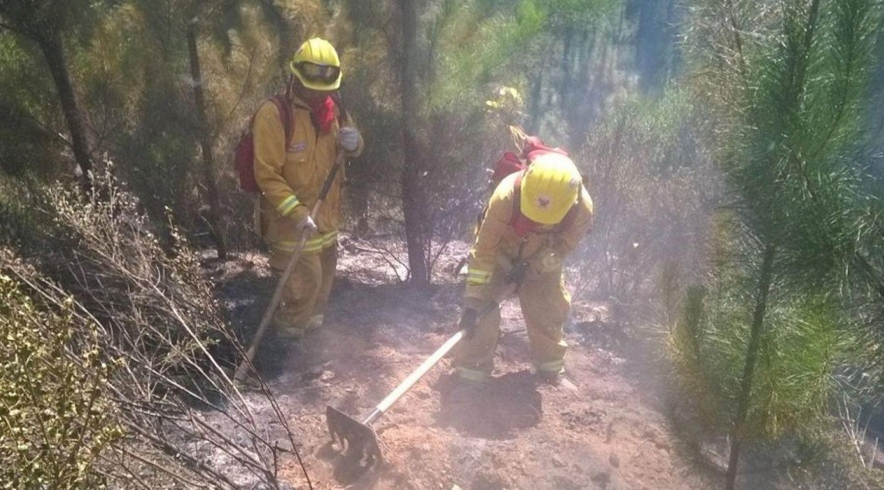 La brigada de 20 guardaparques bomberos forestales del Servicio Nacional de Áreas Naturales Protegidas por el Estado (Sernanp) colaboraron durante 15 días en las labores de control del incendio forestal que se registró en Chile.
