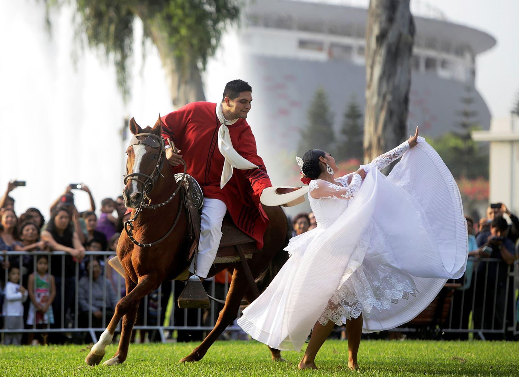 Hoy celebran el d a del caballo peruano de paso en for Noticias del espectaculo del dia de hoy