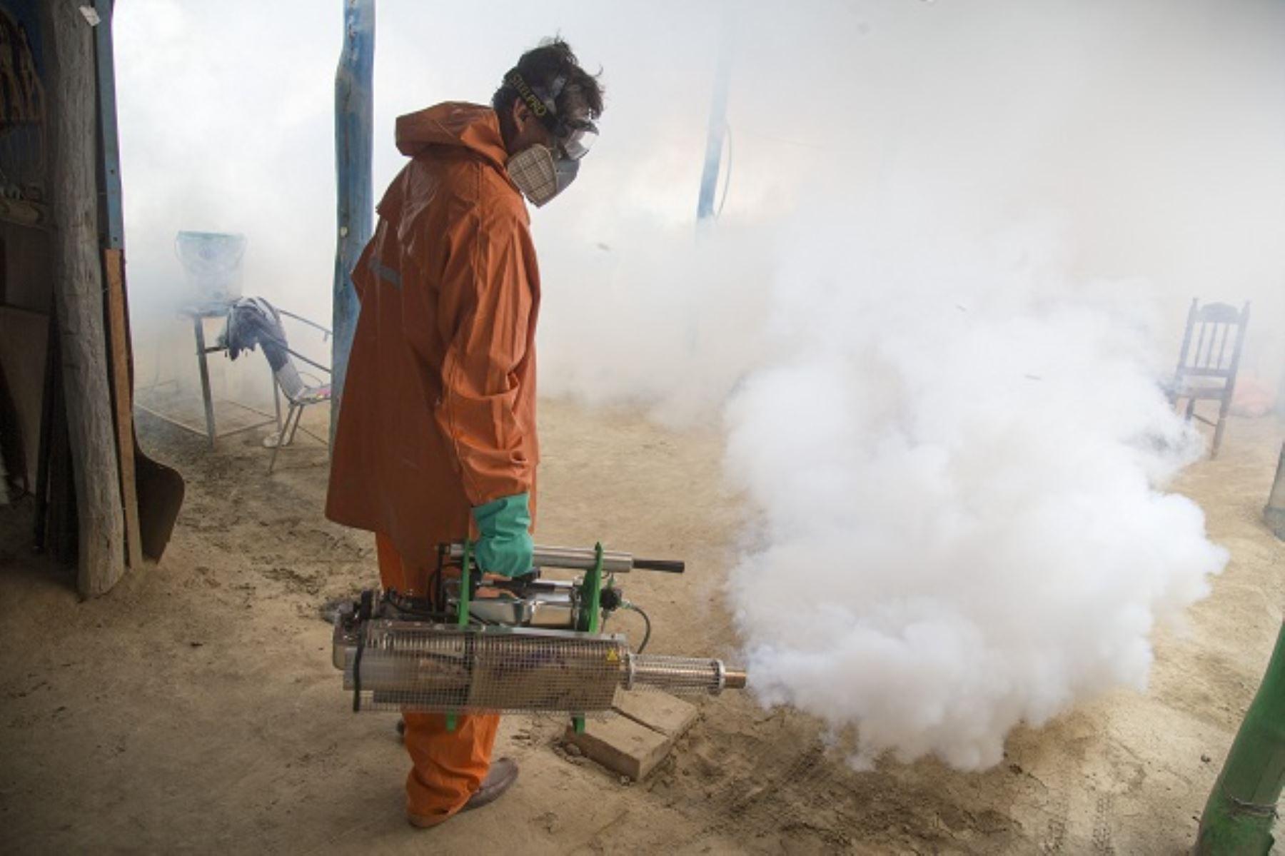 Intensifican acciones de control para prevenir el dengue, chikunguña y zika. ANDINA/Difusión