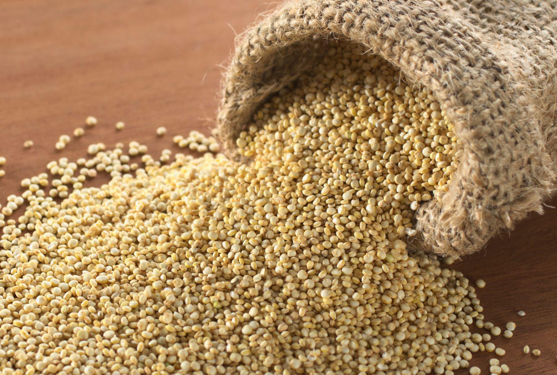 La quinua es un gran alimento. ANDINA/Difusión