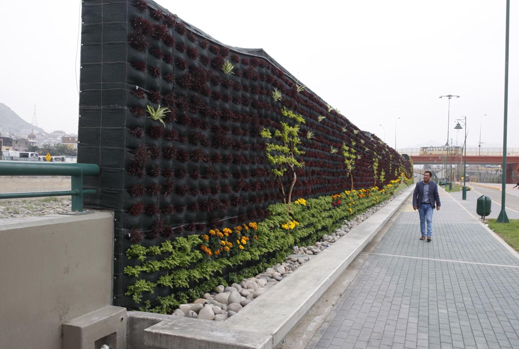 Lima per agosto 07 municipalidad de lima instala for Jardines verticales lima