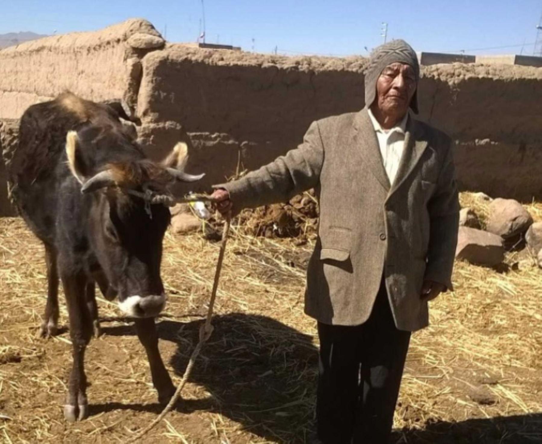 Uno de los varones súper centenarios con 112 años de edad es Pedro Ccallo Ccallo, quien vive en el centro poblado de Chijichaya, distrito Ilave, provincia El Collao, región Puno.