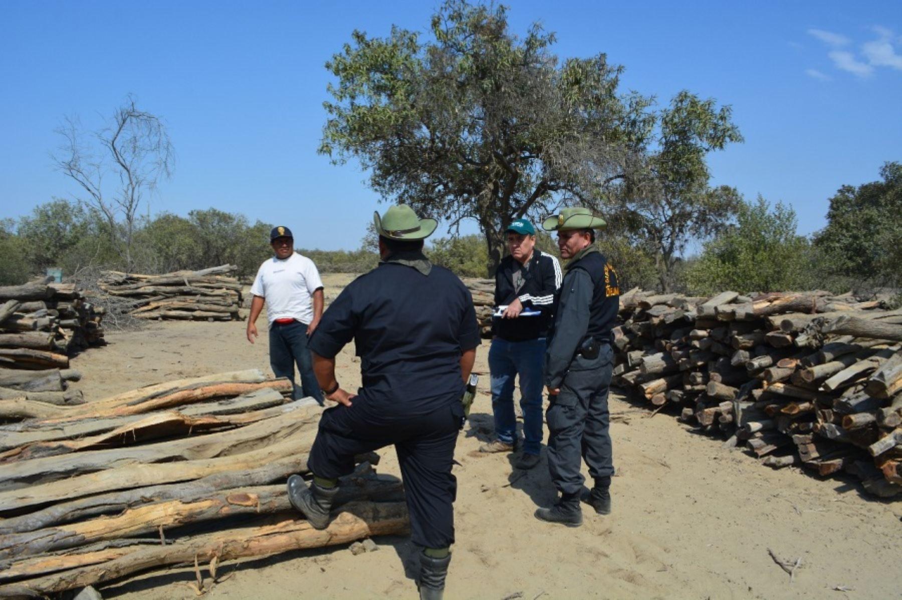 Operaciones contra la tala ilegal. ANDINA/Difusión
