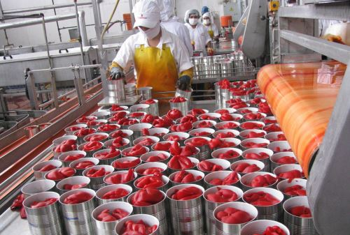 Exportaciones de paprika. Foto. ANDINA/Difusión