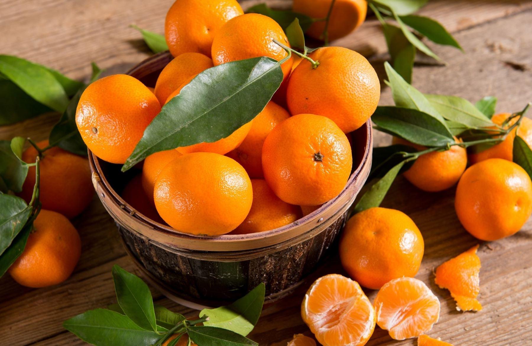 Mandarinas. Foto: ANDINA/Difusión