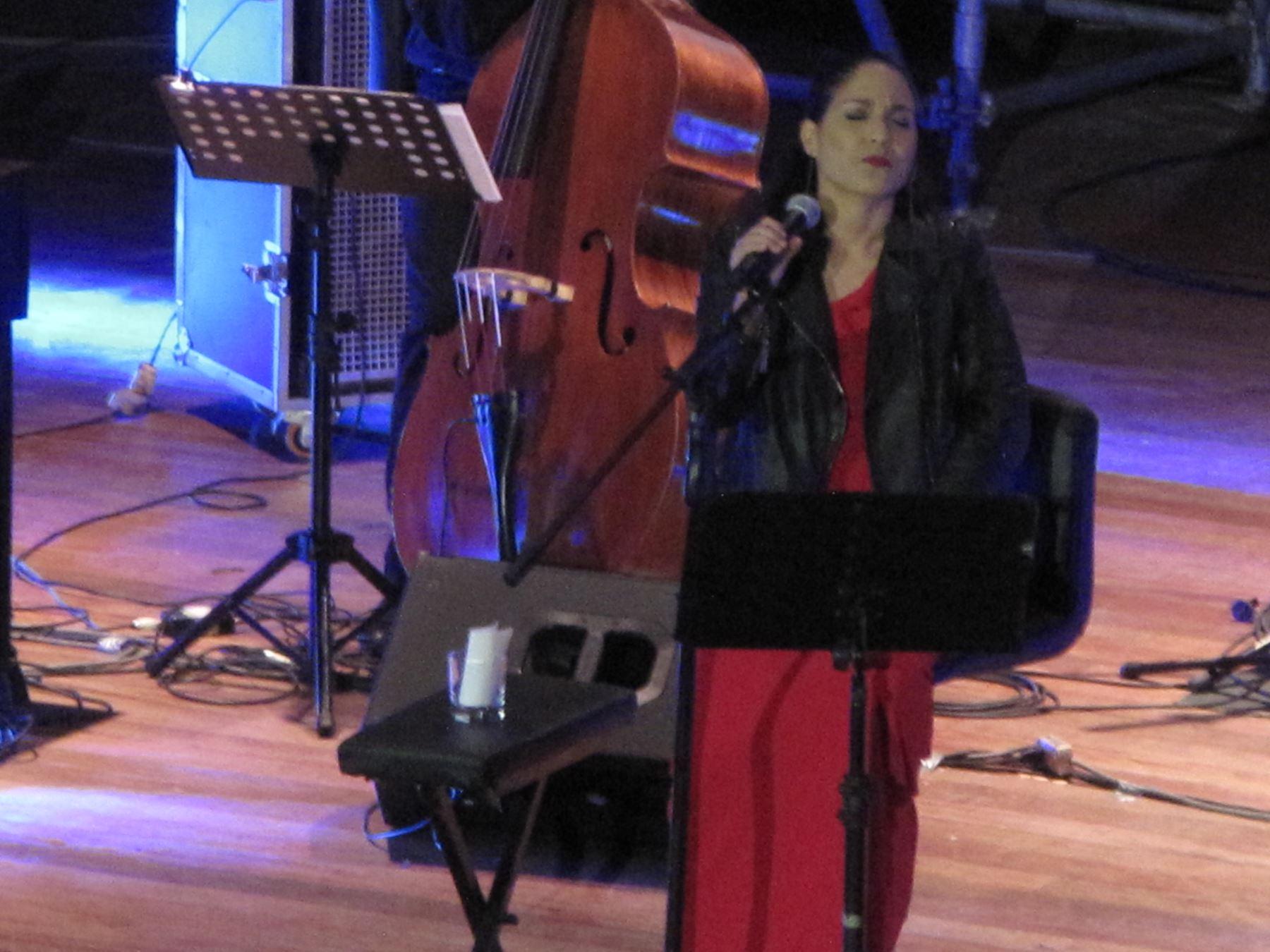 Cantante Haydee Milanés - Foto Ernesto Carlín