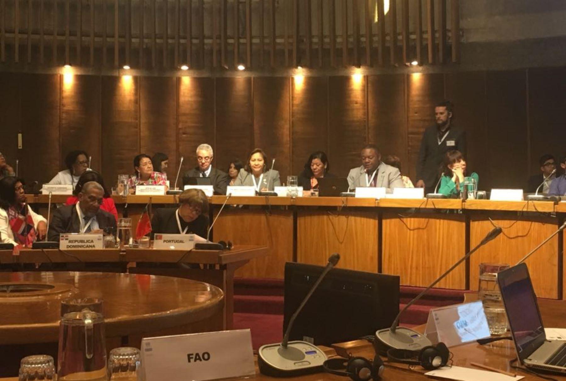 Ministra Ana María Choquehuanca en foro sobre población y desarrollo en Chile.