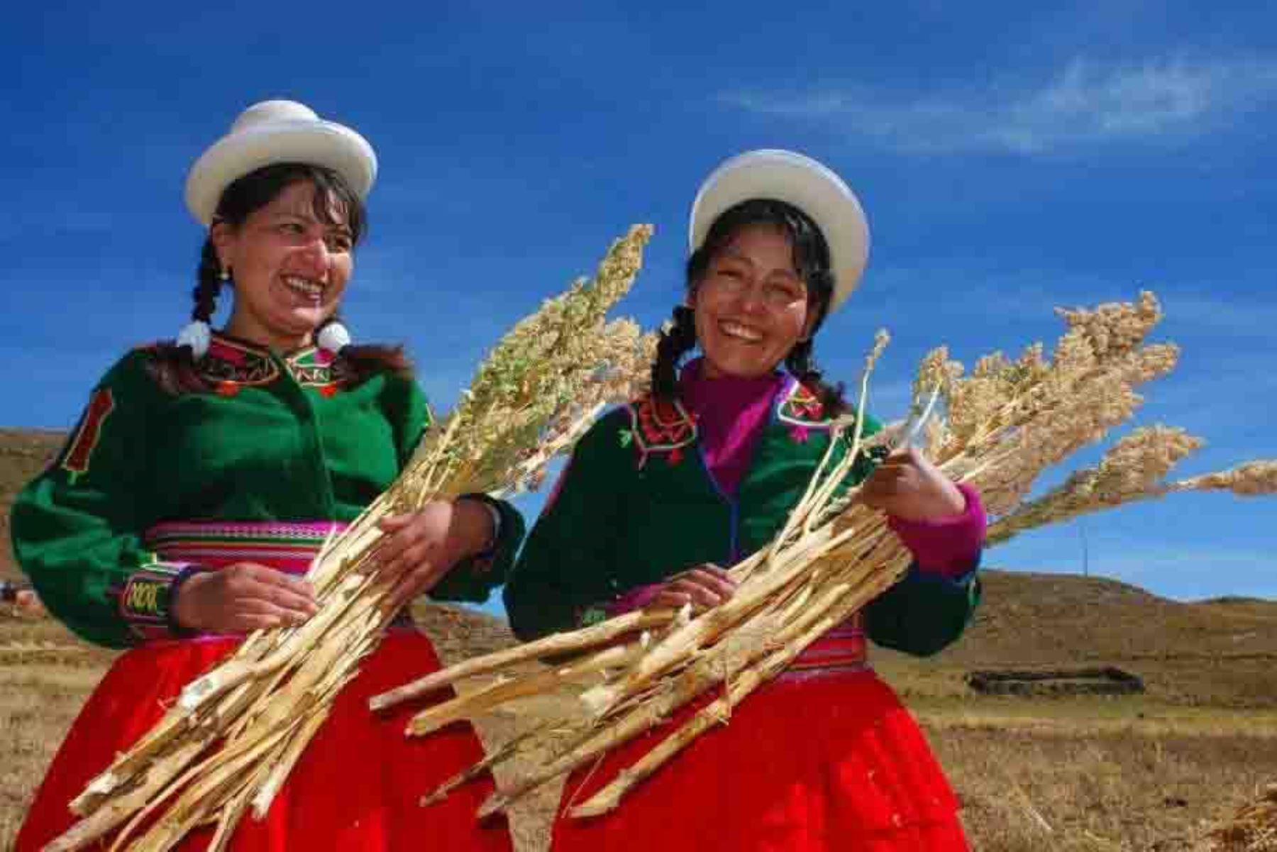 Entre febrero de 2018 y marzo de 2020, el Ministerio de Agricultura y Riego (Minagri) proyecta titular de forma gratuita a más de 100,000 predios pertenecientes a comunidades campesinas e indígenas de las regiones de Apurímac, Cusco y Puno.
