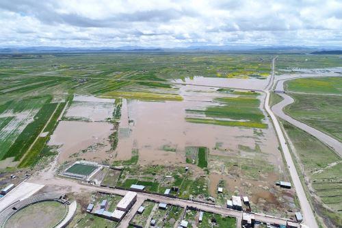 Se afectaron también 2 hectáreas de cultivo y 20 hectáreas de cobertura natural en los fundos de Independencia y Morogachi..
