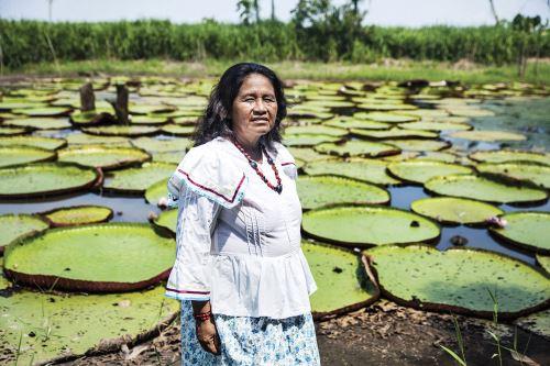 Esta es Emma Tapullima, la dama protectora de los bosques amazónicos