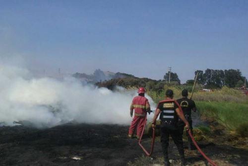 Bomberos y personal del Serenazgo municipal de Nuevo Chimbote controlaron hoy un incendio que destruyó parte de los pastizales de los pantanos de Villa María, ubicados a la entrada de la playa El Dorado, en la provincia ancashina del Santa.
