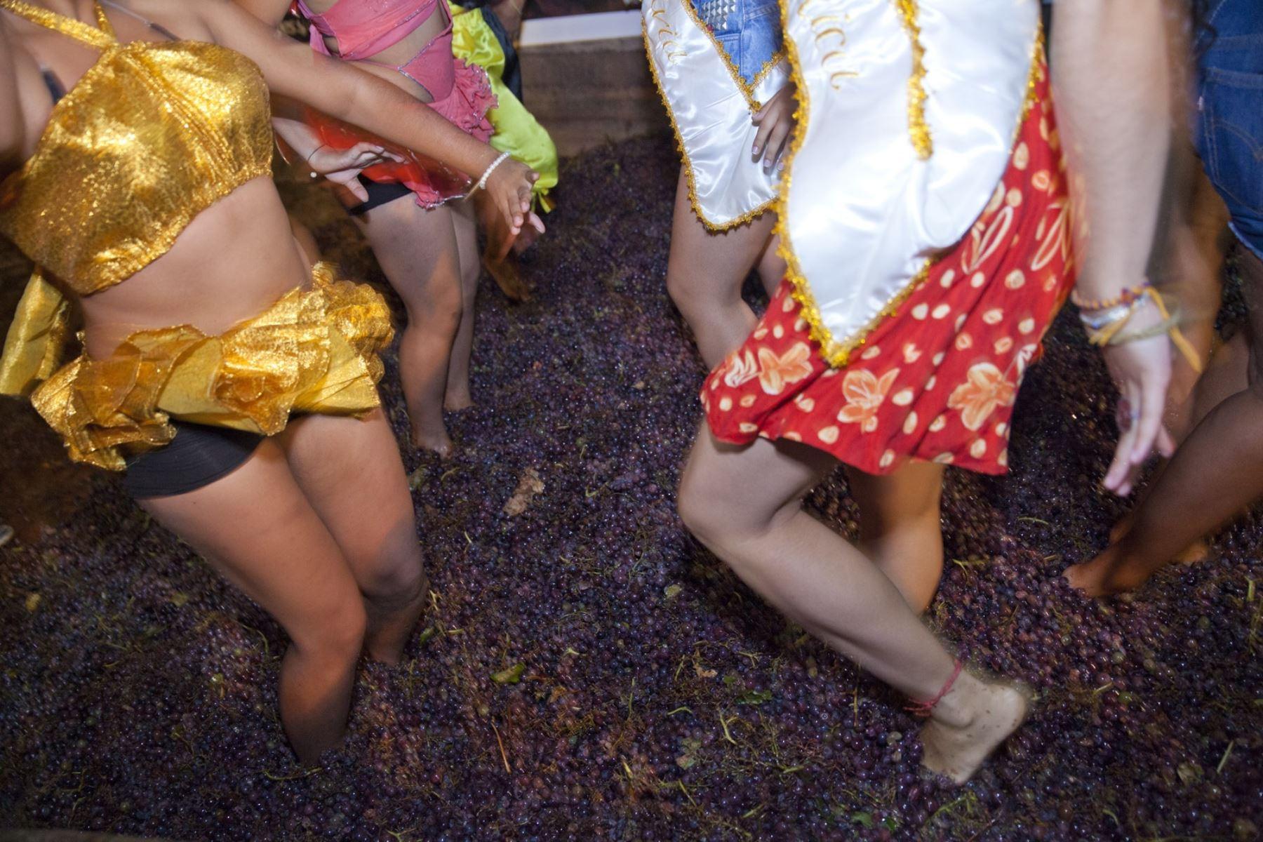 Con la tradicional pisa de uvas las bodegas vitivinícolas de Ica celebran esta semana la Fiesta de la Vendimia, una de las festividades más importantes del calendario festivo iqueño y que congrega a cientos de turistas. Foto: Promperú/Adrián Portugal