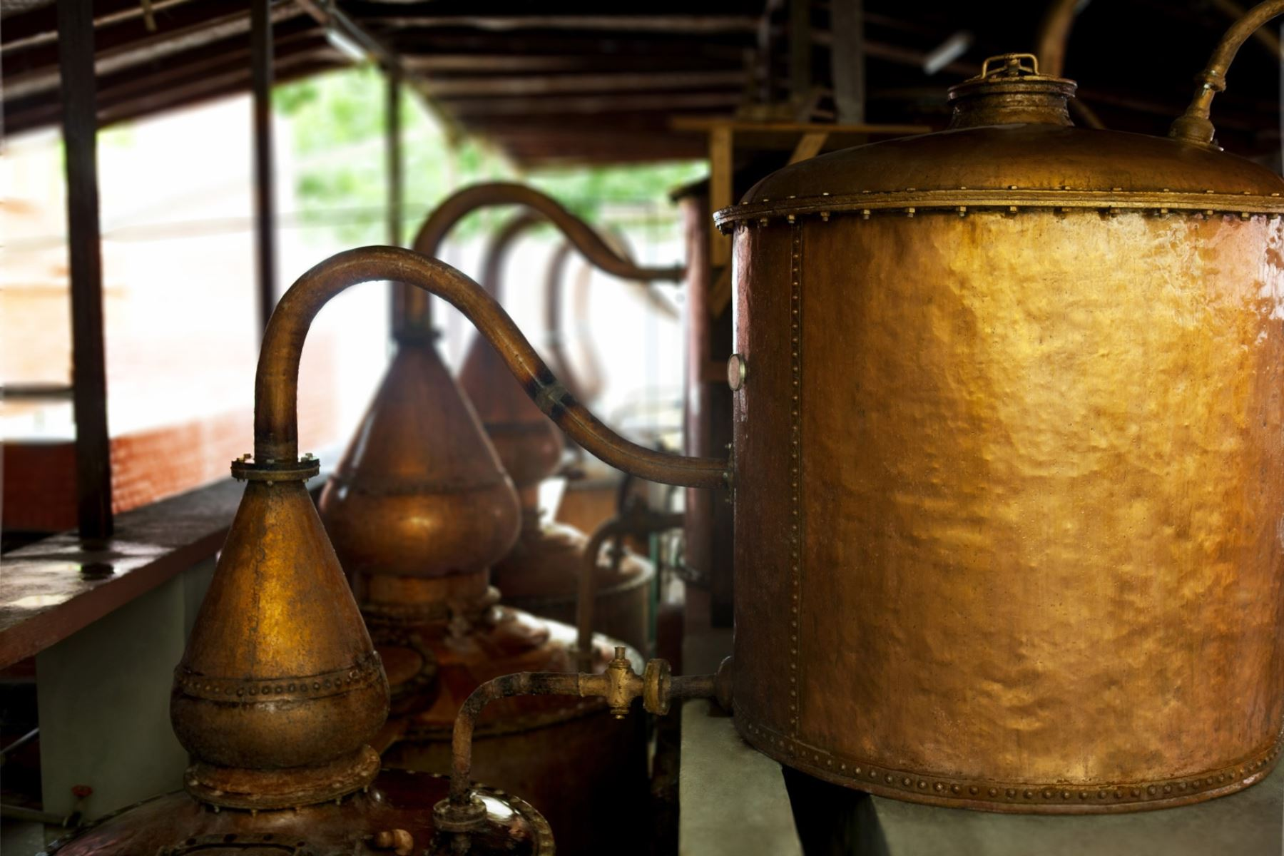 La bodega Vista Alegre es otro viñedo de Ica donde se vive la tradición. Los visitantes apreciarán de su hermosa infraestructura y maquinaria para la elaboración de pisco y vino de hace décadas. Foto: Promperú/Gihan Tubbeh