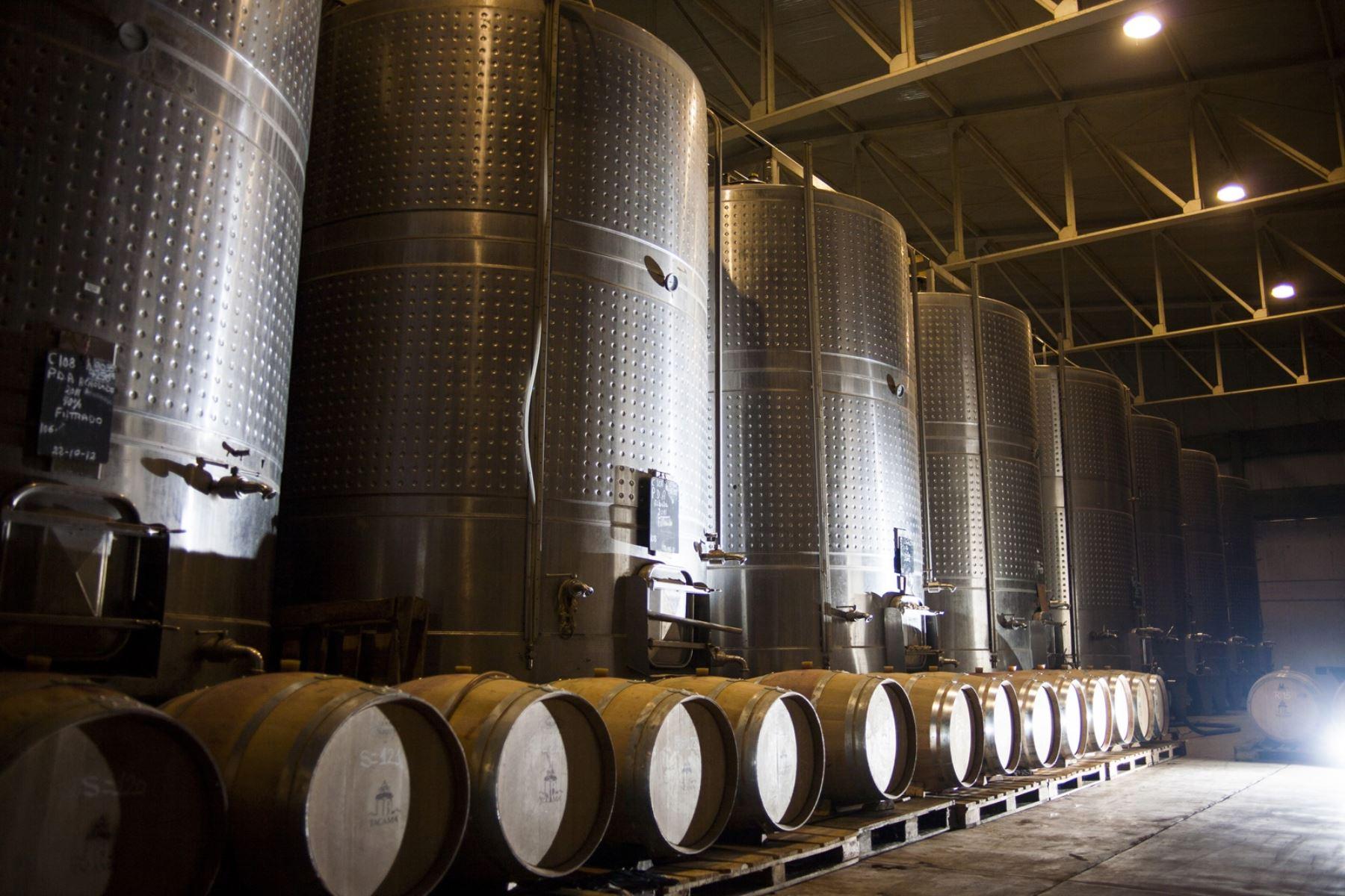 Uno de estos viñedos es la bodega Tacama que destaca por su hermoso fundo y casona llena de historia y tradición. Sus anfitriones ofrecen una visita guiada donde conocerá el proceso de elaboración del pisco y el vino. Foto; Promperú/Daniel Silva