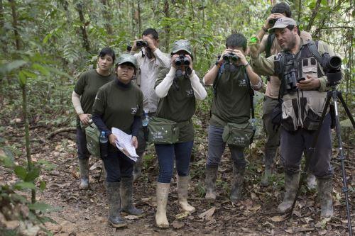 Perú tiene 1,857 especies de aves y somos el segundo país con más especies de aves en el mundo.