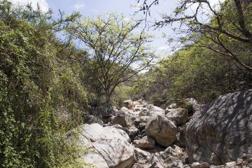 Chaparrí: la maravillosa reserva ecológica