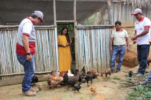 Familias asháninkas y andinas de Junín desarrollan proyectos sostenibles. ANDINA/Difusión