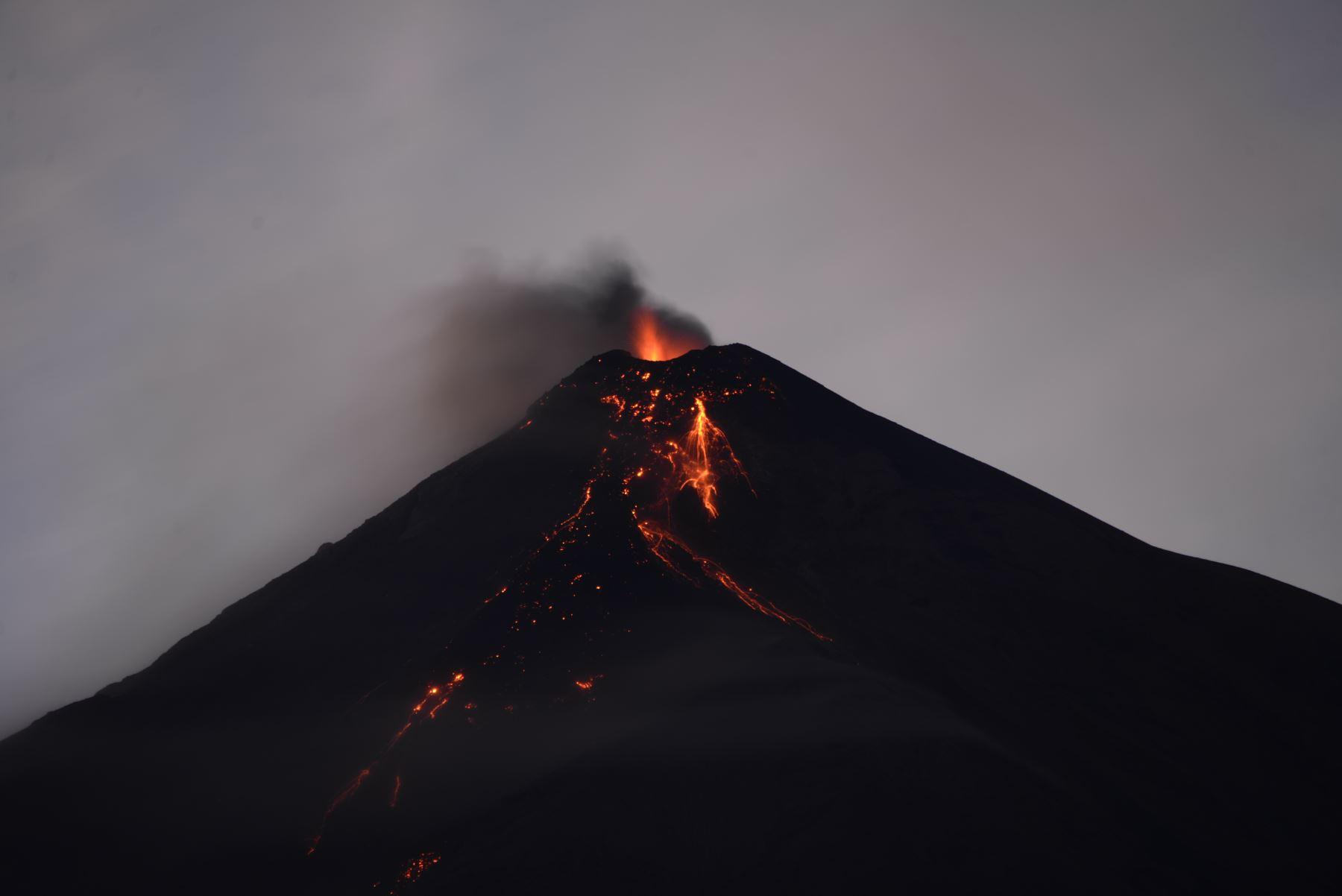 Una historia de rescate canino tras la erupción volcánica en Guatemala