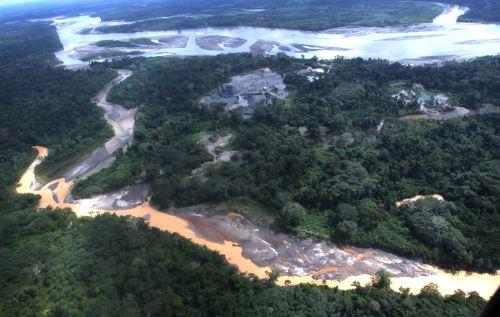 La agricultura migratoria y ganadería, además de la tala ilegal afectan también a los bosques amazónicos.