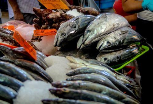 Estrategia 'De la red a la mesa' promueve mayor participación de los pescadores artesanales y acuicultores.