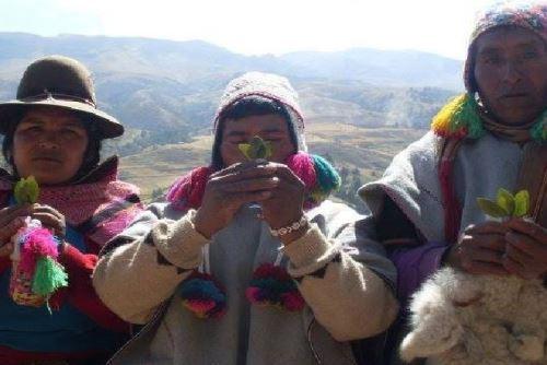 Un total de 47 lenguas originarias se hablan en el Perú.