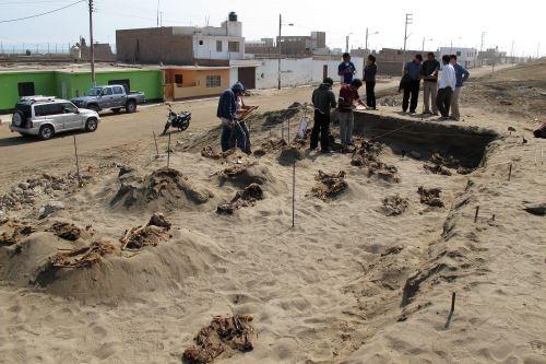 Otro evento que llamó la atención mundial fue el hallazgo del sacrificio de más de 140 niños.