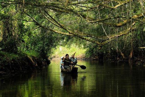 El turismo de naturaleza contribuye a la conservación de los bosques.