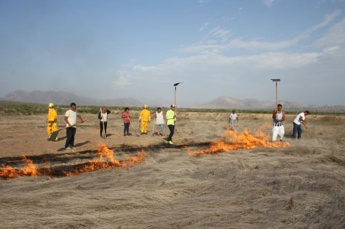 Cusco, Ayacucho, Puno, Huánuco y Cajamarca son las regiones en las que se ha reportado mayor número de incendios forestales.