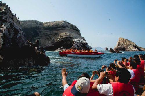 Desde Paracas se puede visitar las islas Ballestas, lugar donde habitan lobos marinos y aves guaneras.