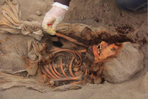 Con hallazgo de más restos humanos ya suman 269 los niños sacrificados hace 550 años.
