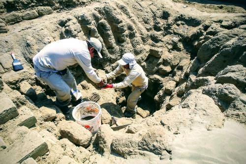 La investigación arqueológica halló nuevas estatuillas que se presentarán hoy.