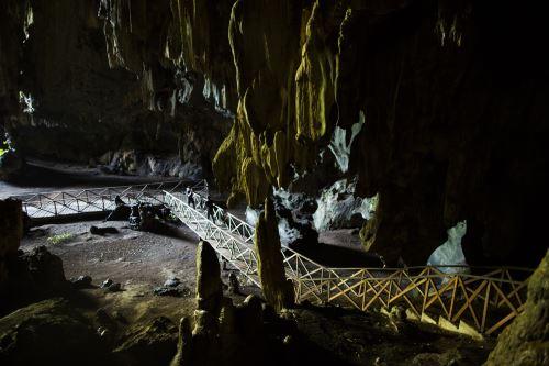 Cueva de las Lechuza es un atractivo turístico del Parque Nacional Tingo María. Foto: Promperú/Musuk Nolte