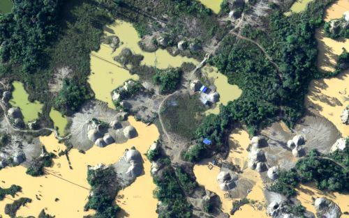 La minería ilegal es uno de los mayores flagelos que enfrentan los bosques.