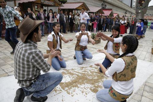 Más de 140 productores de café de Villa Rica se beneficiarán con la exportación de café orgánico.