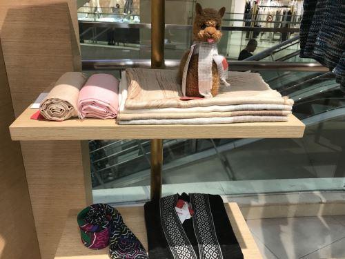 Tienda alpaca en China