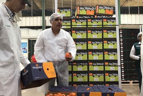 Ministro Gustavo Mostajo inspecciona empacadoras en Ica